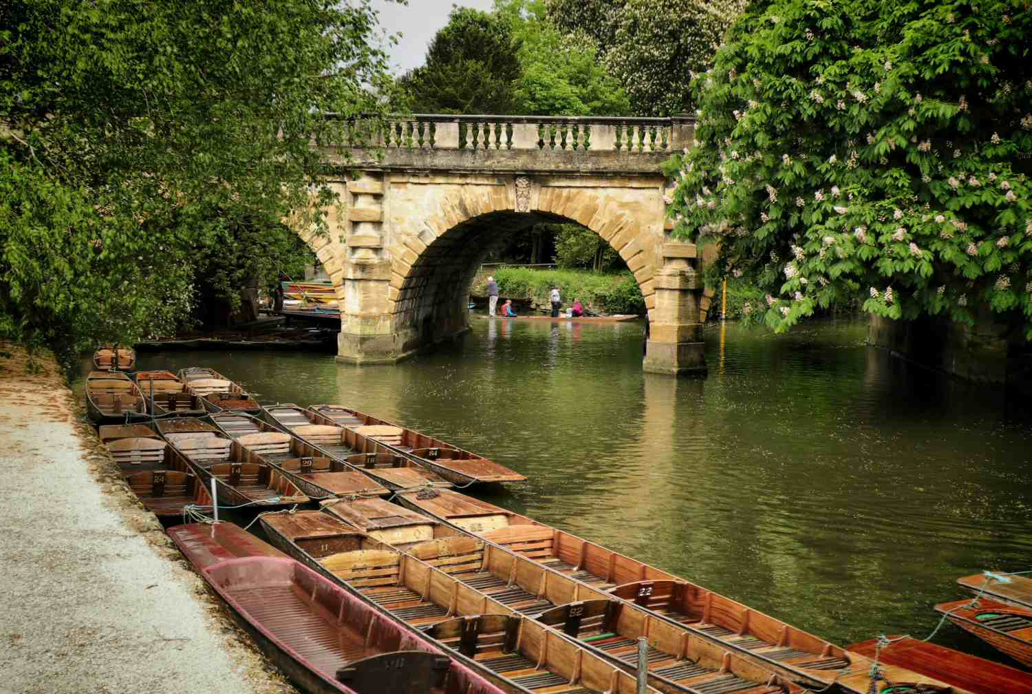 Punts in Oxford